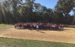 WMS makes strides against breast cancer