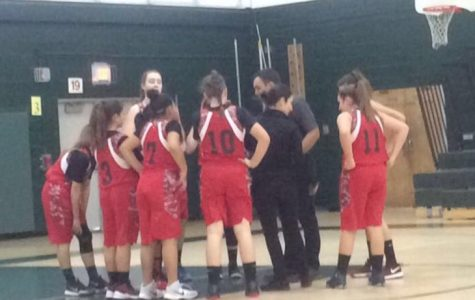 """WMS Lady Warriors are overwhelmingly """"hype"""" for their championship game… are you?"""