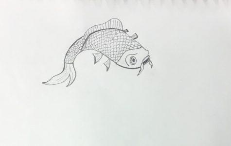 Koi fish by Anthony Ciaccio