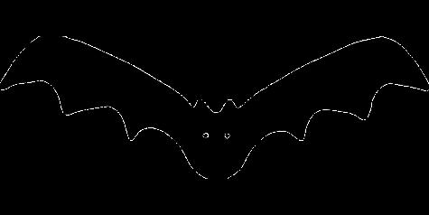 Photo via https://pixabay.com/vectors/bat-vampire-cartoon-halloween-36252/ under the Creative Commons Liscense