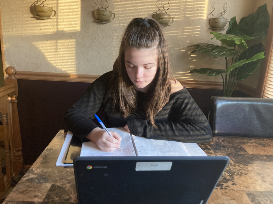 WORK HARD, STUDY HARDER: Ashley Vincent hits the books in preparation for an upcoming AP test